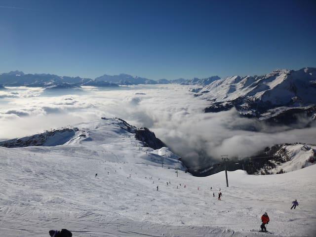 Oben im Skigebiet