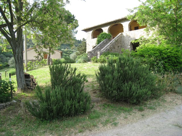 piccolo cottage - Castel del Piano - Casa