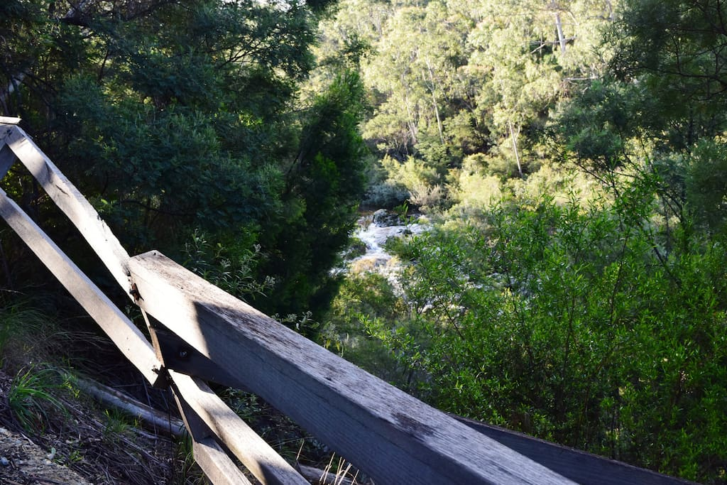The gorge, out front of the cabin. Walking track down to swim spot.