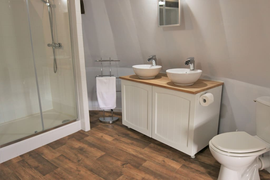 Private en-suite with walk-in shower