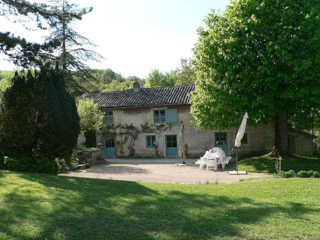 Maison Vigneronne 18 pers., 3 hect. - Tournus - Huis