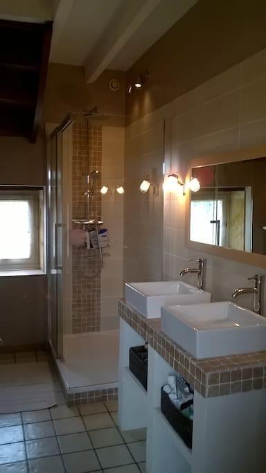 Une salle de bain avec douche et deux vasques