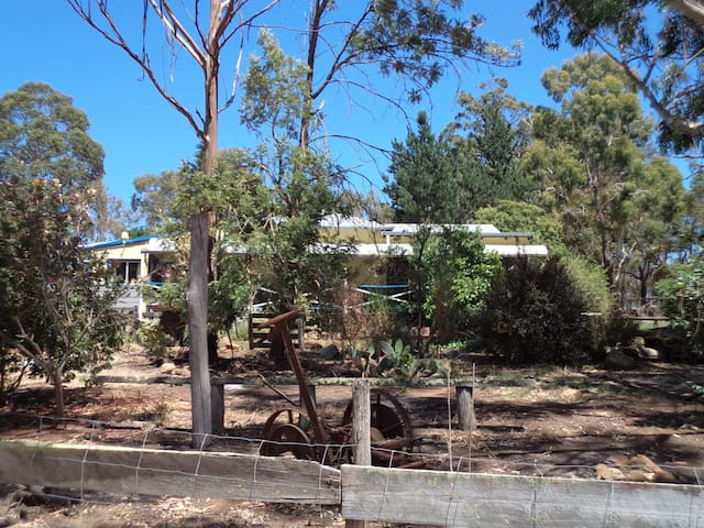 Where the gum trees are - Mount Barker - House
