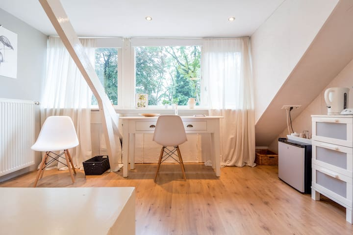 Bright attic with private bathroom - Zeist - Casa