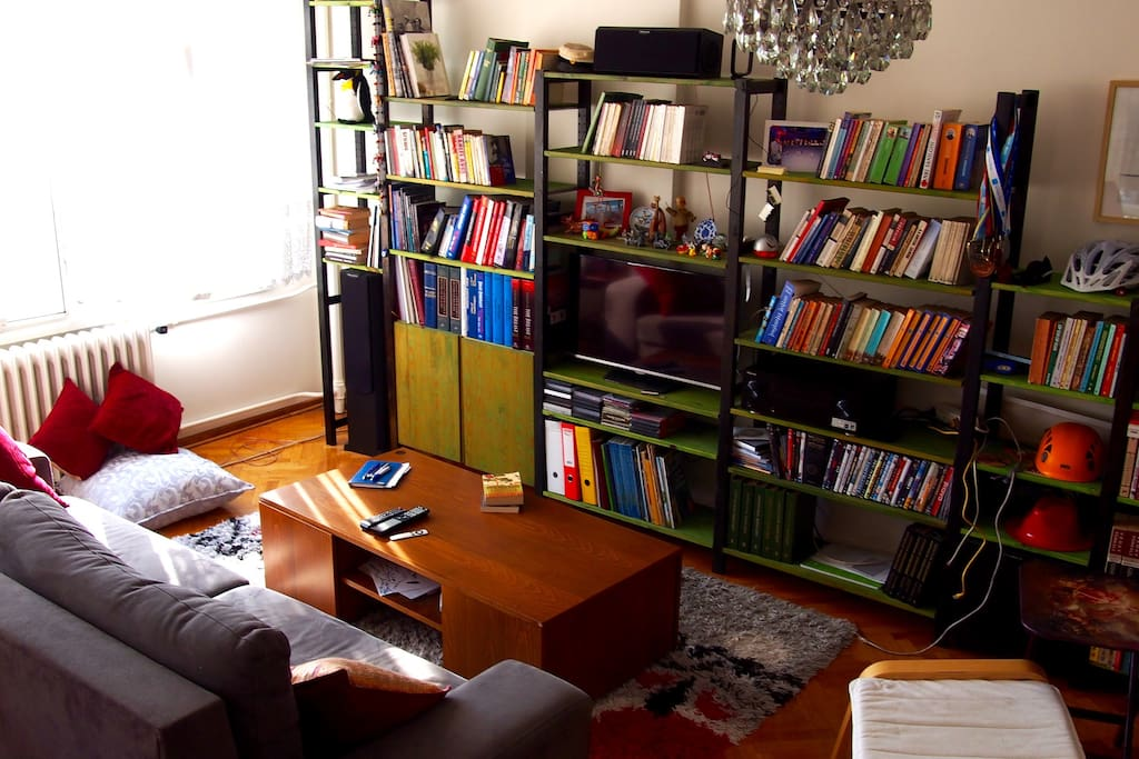 There is a couch and  a comfortable chair in the living room, with the library.