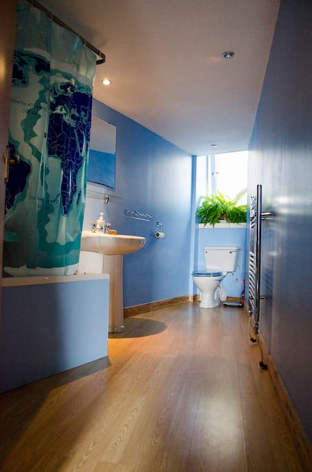 Bath and shower room.