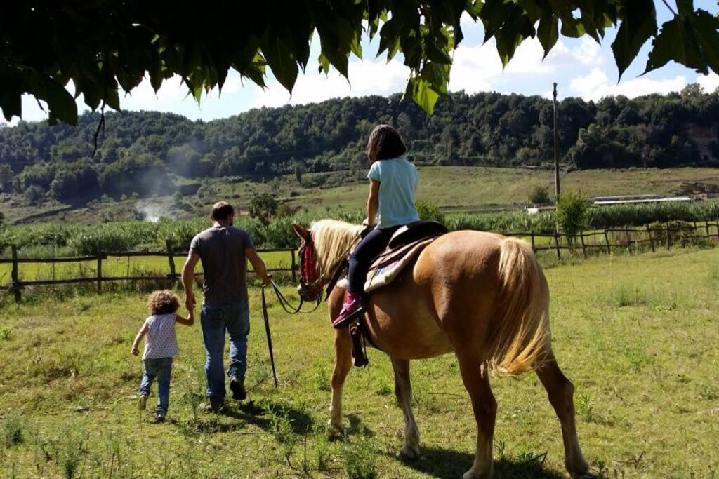avvicinamento al mondo equestre