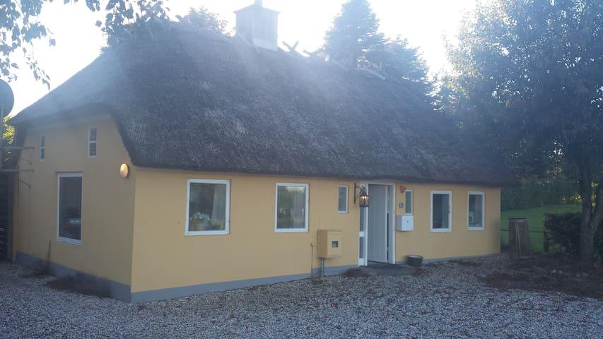 Hyggelig hus med stråtag