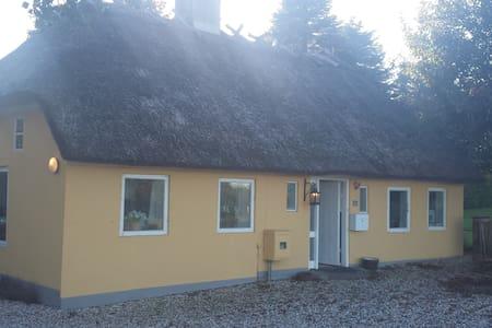 Hyggelig hus med stråtag - Rødkærsbro - Hus
