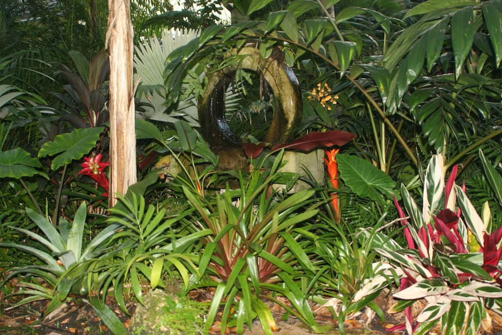 Asian fountain and Bromeliads