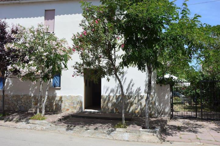 Via Matteotti - Cavalluccio - Valledoria - บ้าน