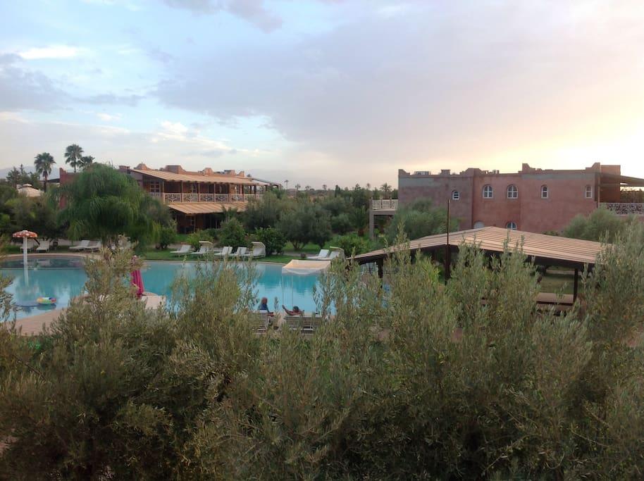 Grande piscine lagon de 500 m2 Transat   Dispo dans la residence halal Spa et massages