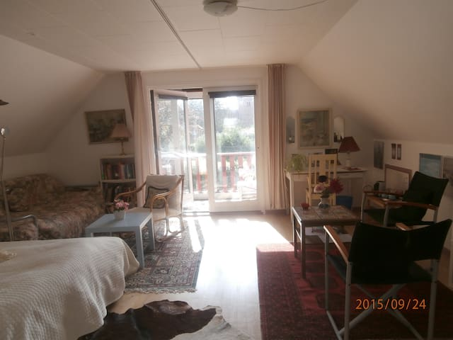 Huge,room with balcony 1h from CPH - Dianalund