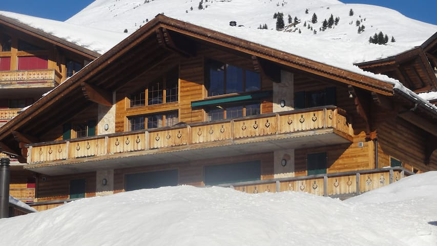 Cosy appartment on 650km slopes - Les Crosets suisse - Byt