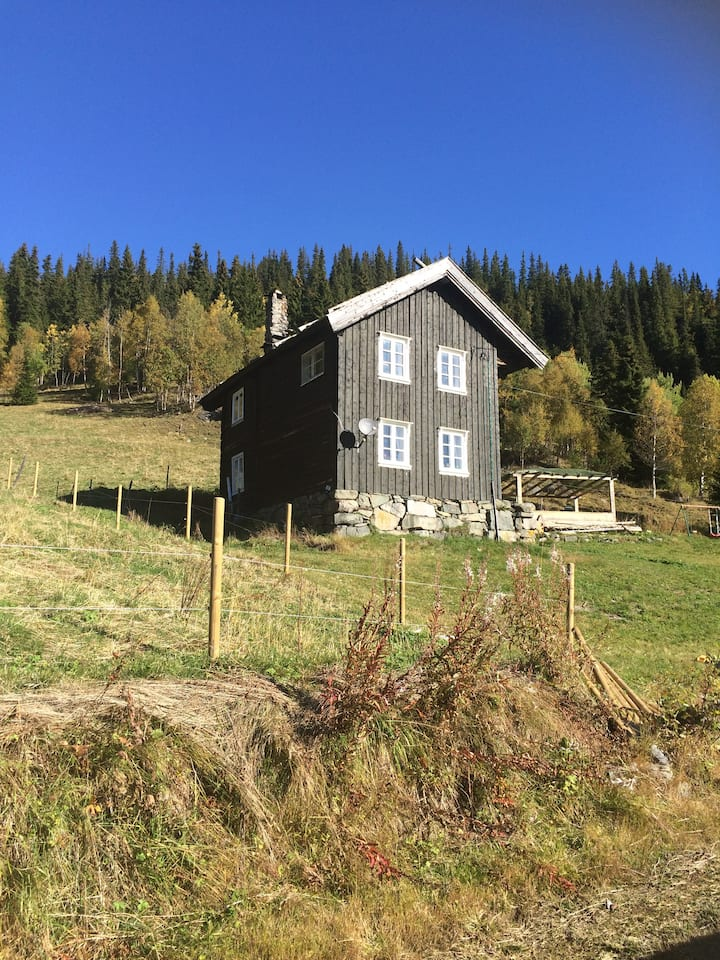 Telemark, Bondal-Old farmer place,