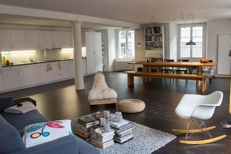 Spacious loft near Zurich - Uster - 公寓