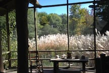 This photo was taken Sept. 27. The light on the tall grass is STUNNING! THIS is what you see from your bed.