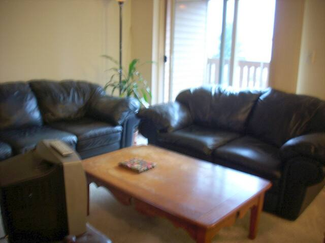 Spacious, Modern, 1 Bd Apt.-avail. 3/23-4/12 only
