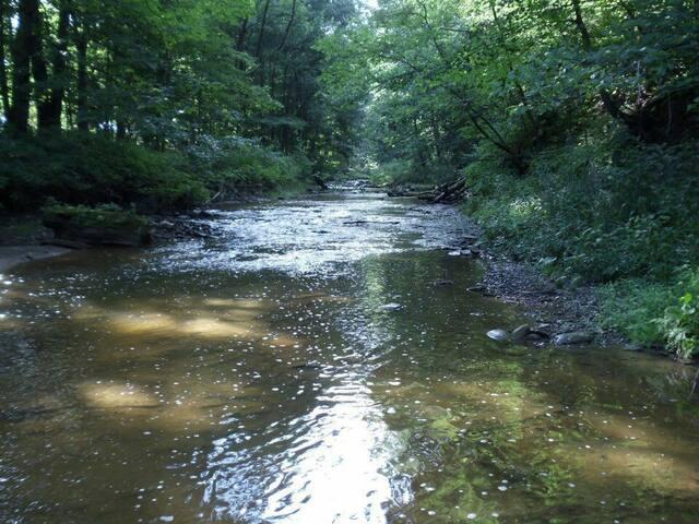 RV Camper Site Hookup 60 acres creek/waterfalls