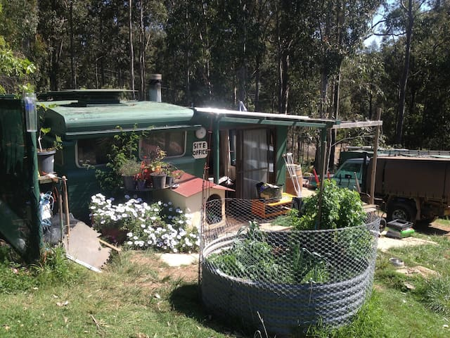 Cosy caravan on 4.2 acres - Narooma - Cabin