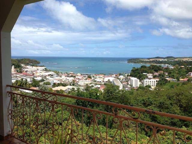 belle vue panoramique du balcon coté salon