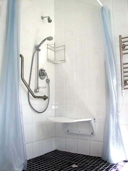 The bathroom is fitted with a roll in shower that has an extra large fold down seat (53 cm from the floor) and two grab rails, a fixed showerhead as well as an adjustable hand shower.