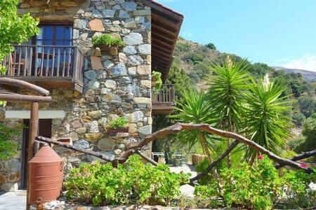 Villa Areti or Lito - Villa