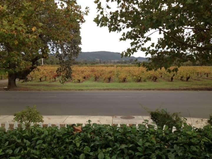 Private Vineyard View Suite w/Bikes