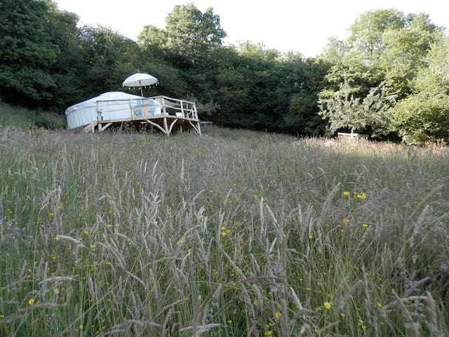Butterfly Meadow Yurt - luxury mountain romance - Longtown