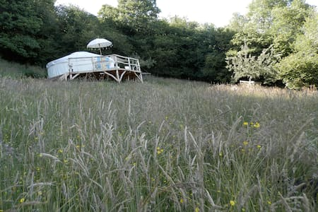 Butterfly Meadow Yurt - luxury mountain romance - Longtown - Iurta
