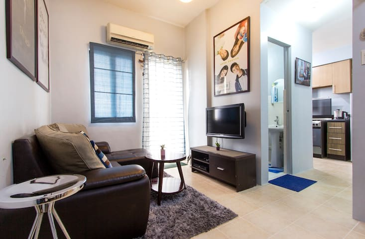 Fully furnished 1 BR condo unit  ( no  WIFI)