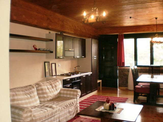 Spacious Chalet in Livadi for 4pax - Arachova - บ้าน