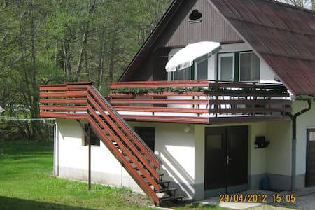 Apartment near lake with a terrace - Ribčev Laz - Daire