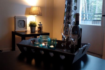 Charming flat near Stockholm city - Stockholm - Appartement