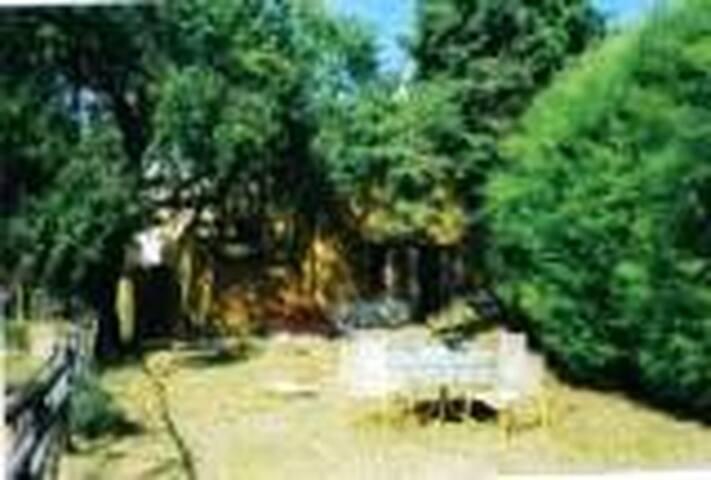 riservata villetta nel vede - Torricella - Villa