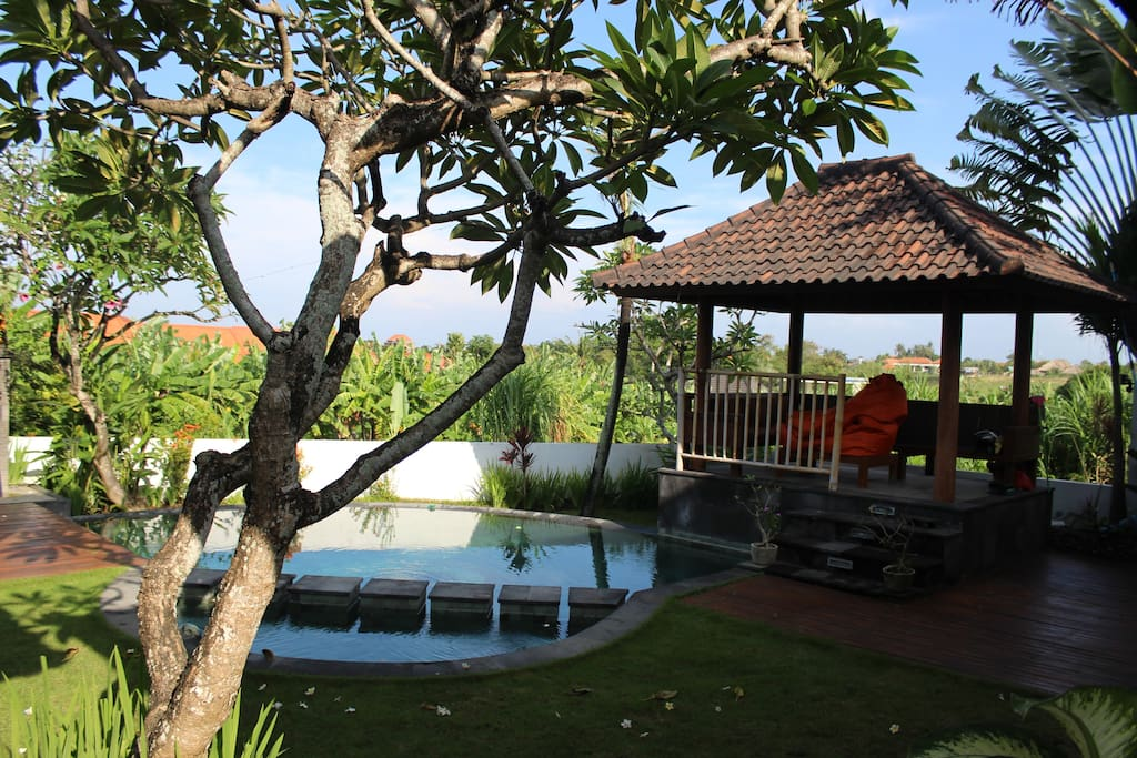 view when your enter the villa