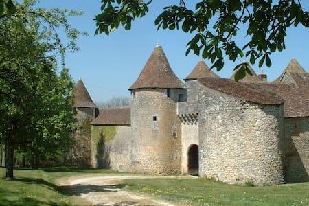 Château de Forges-Chambres d'hôtes - Concremiers - Castillo