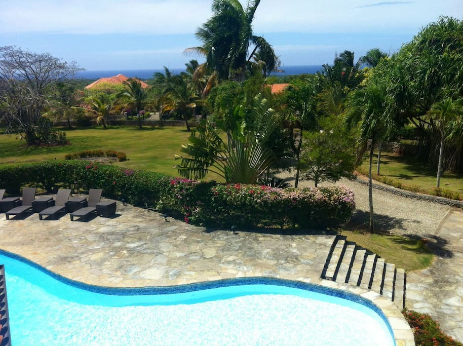 Pool view from Terrace and ocean views
