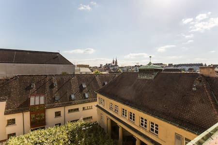 Spacious roof top appartement - 巴塞爾 - 公寓