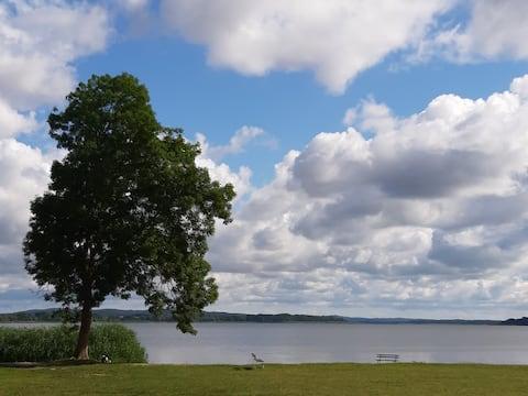 """Ferienwohnung  """"See-Pur"""" direkt am Malchiner See"""