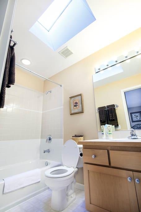 Sky-lit bathroom; lots of natural light