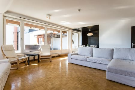 Spacious Rooftop Apartment - Basel