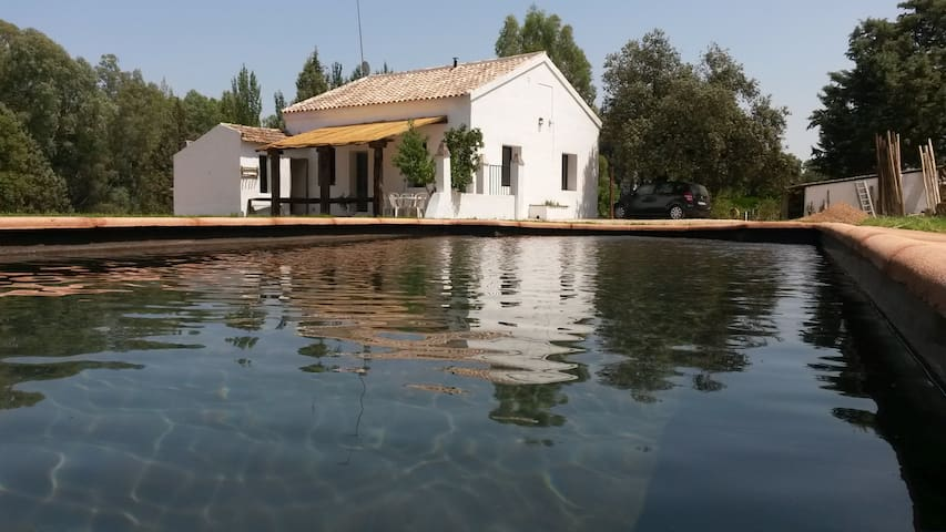 Andalusian Cozy Country House Arel - El Pedroso - Dom