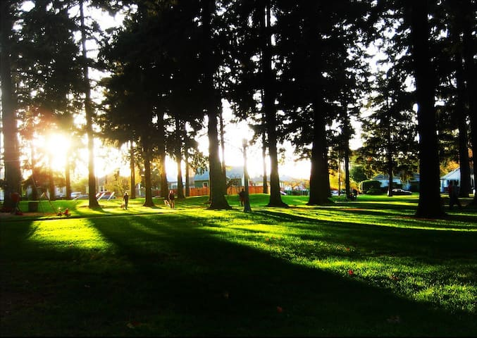 Alberta Park offers lots of shade which is great in the summer time!