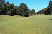 Fernhill is a spacious park with lots of open lawn, great for picnicking and features an athletic track for running and walking.