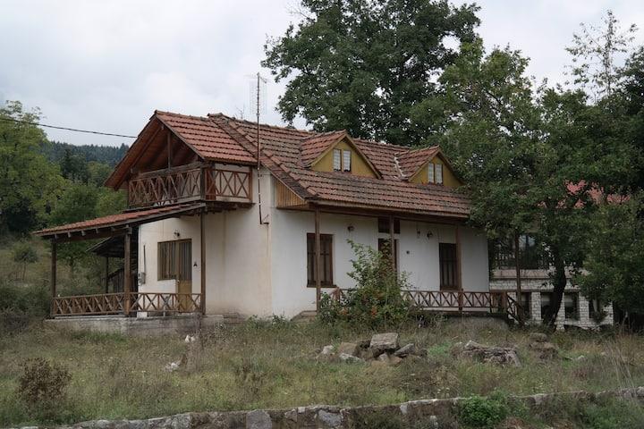 The Lake's House