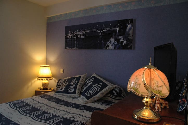 Nice Room in apartment near center of Toulouse - Toulouse - Apartemen