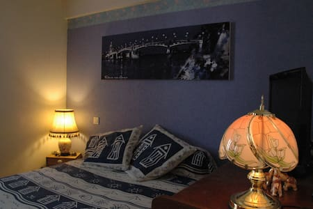 Nice Room in apartment near center of Toulouse - Toulouse