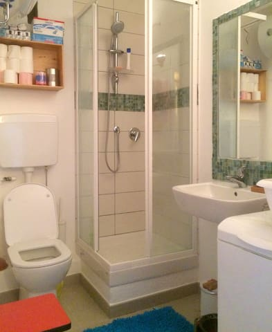 La salle de bain entièrement refaite avec machine à laver.