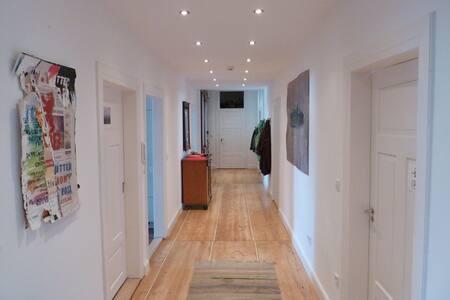 Ruhiges Zimmer in Altbauwohnung - Heidelberg - Wohnung